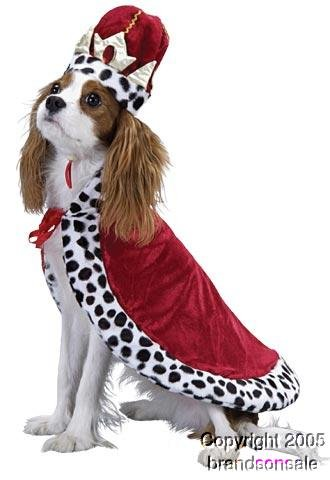Pet Royal King Dog Costume (Medium)