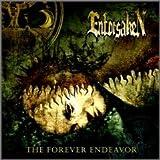 Forever Endeavor