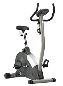 Schwinn 101 Upright Exercise Bike