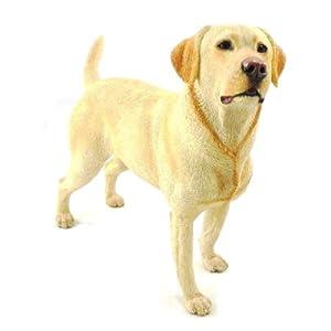 """Amazon.com - Statuette """"Labrador"""" beige."""