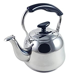 Electric kettle best reviews cheap 1 liter alpine cuisine for Alpine cuisine tea kettle