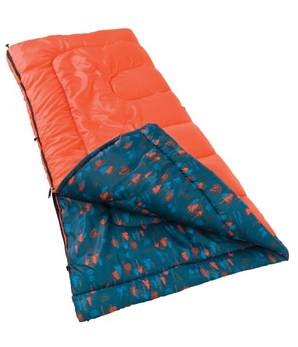 Coleman Boys Lights Out Sleeping Bag