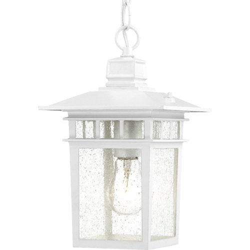 Nuvo Lighting 60/4954 Cove Neck Hanging Lantern with Clear Seeded Glass, White