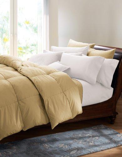 colored down comforter king Cuddledown 400TC Colored Down Comforter King Summer Honey  colored down comforter king