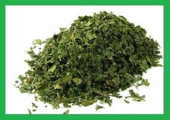 100% Organic Nettle Leaf Dried Herb ~ 1 Ounce Bag ~