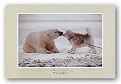 Polar Kiss by Thomas Mangelsen 27.5&quot;x17.5&quot; Art Print Poster