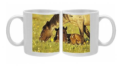 Photo Mug Of Mustang Wild Horse - Mare Grazes Near Her Resting Colt, Summer front-1064336