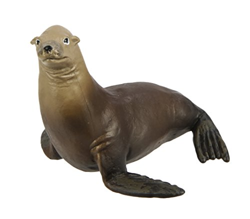 Safari Ltd Wild Safari Sea Life Sea Lion Realistic Hand-Painted Toy Figurine Model For Ages 3 And Up