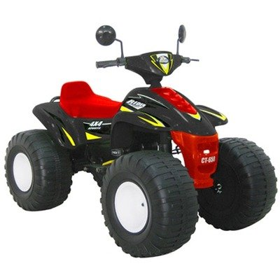Electric Big Beach Racer Riding Toy