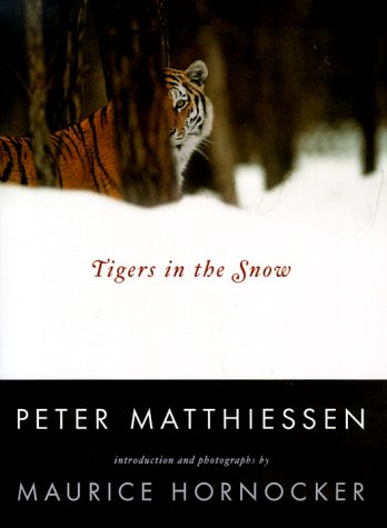 Image for Tigers in the Snow
