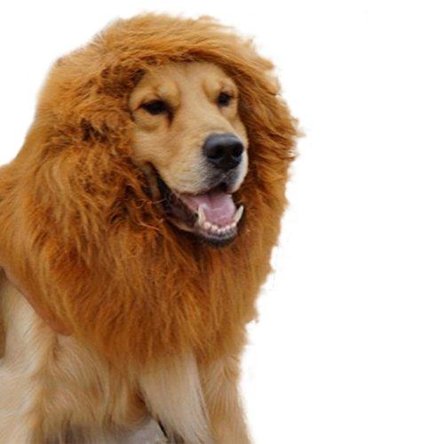 Large Pet Costume Lion
