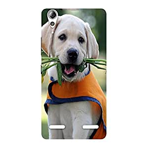 Ajay Enterprises Dog With Flower Back Case Cover for Lenovo A6000