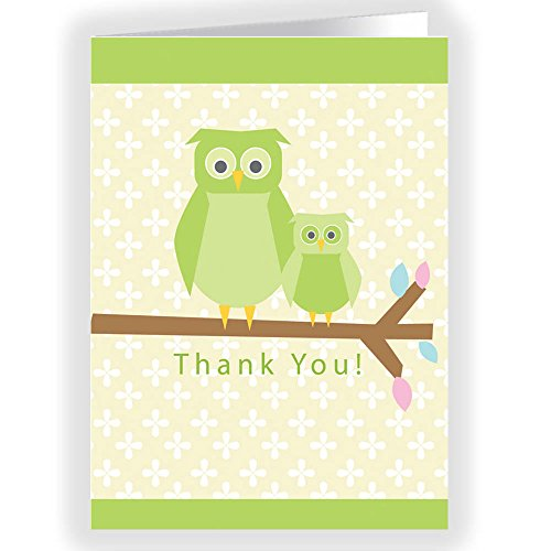 Mama Owl & Owl Baby Thank You Note Card - 18 Boxed Cards & Envelopes front-148937