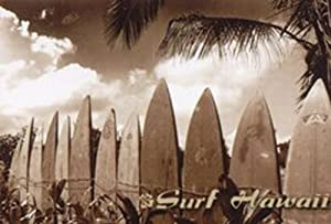 IMAGE OF HAWAII'S SURF BOARDS READY TO CATCH A WAVE CALLED Surf Hawaii by Jason Ellis 24 X 36 Poster