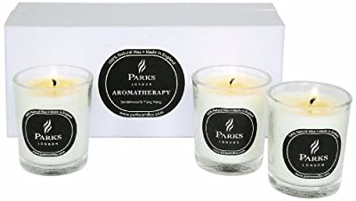 Praks London Tot Glass Set Includes 3 X 10 Cl Candles Sandalwood And Ylang Ylang from Parks London