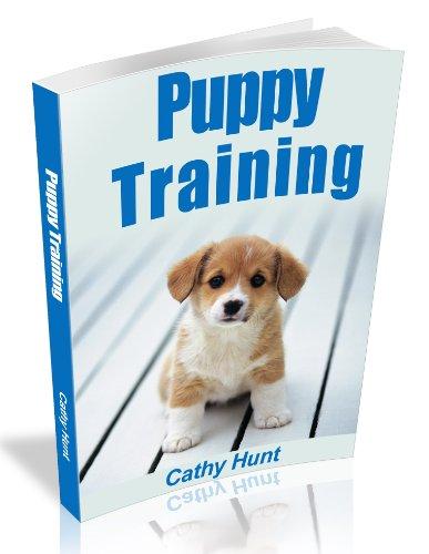 Potty Training Ebook