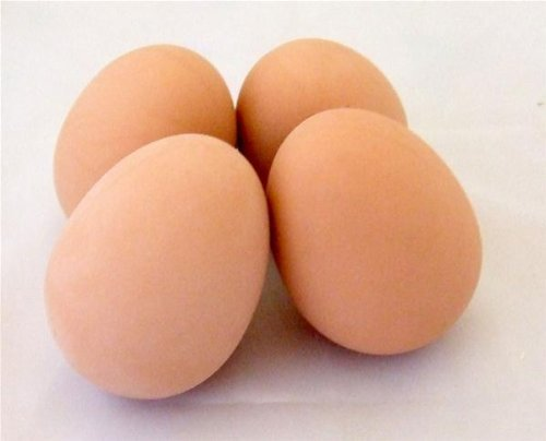 2-Poultry-Nest-Eggs-rubber-dummy-eggs-realistic-weight-Misc