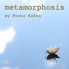 Metamorphosis Audiobook by Franz Kafka, David Wyllie - translator Narrated by Greg Wagland