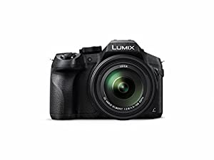 Panasonic LUMIX DMC-FZ300K 4K, Point and Shoot Camera with Leica DC Lens 24X Zoom, (Black)