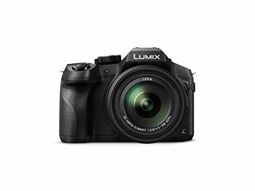 Discover Bargain Panasonic LUMIX DMC-FZ300K 4K, Point and Shoot Camera with Leica DC Lens 24X Zoom (Black)