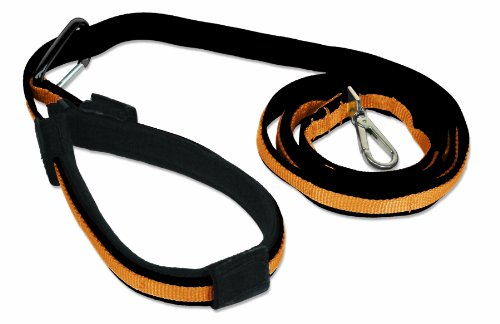 Kurgo Quantum Dog Leash, Black