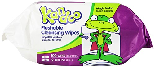 Kandoo Flushable Magic Melon Wipes 100 Count Refills (Pack of 6)