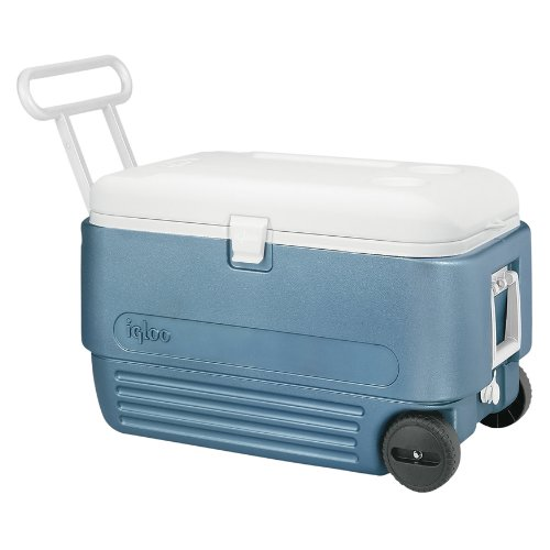 Igloo MaxCold 60 Roller Cooler (60-Quart, Icy Blue)