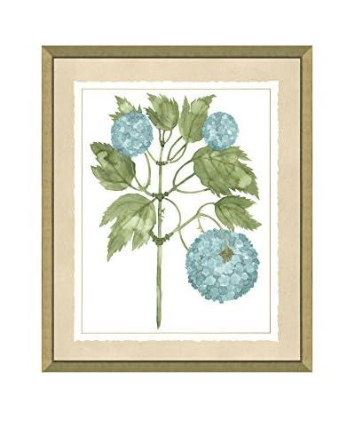Art Source Watercolor Spa Botanical Print I, Multi, 24 x 20