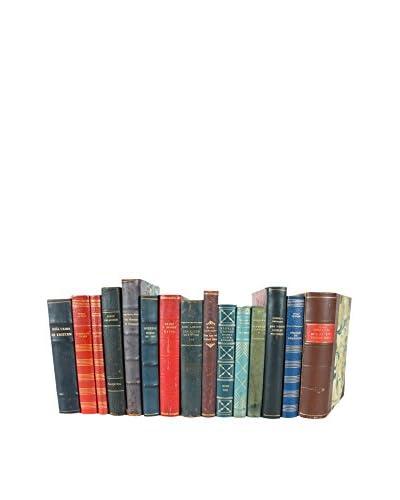 Set of 15 Designer Leather Books