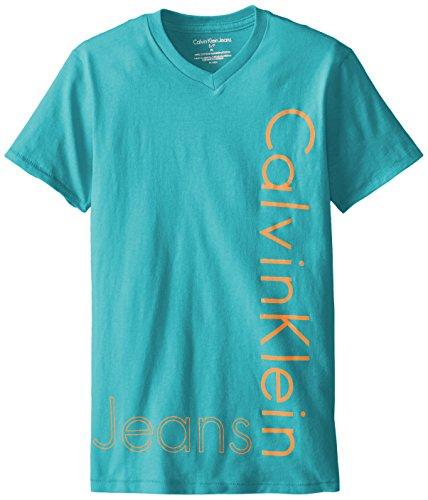 Calvin Klein Big Boys' Iconic V-Neck Tee, Adriatic, Large
