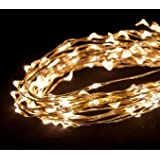 """Dew Drop LED light string Battery Operated (Warm White, 20' long, Single Strand - 60 LEDs - 1.5W - 4"""" spacing)"""