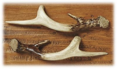 Big Sky Carvers Antler Drawer Handle, Left - 1