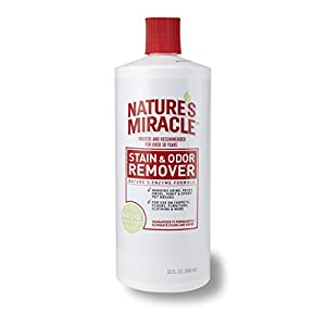 Nature's Miracle Stain & Odor Remover, 32-Ounce Pour Bottle (5125)