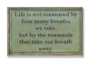 Stupell Home Life is Not Measured Inspirational Wall Plaque