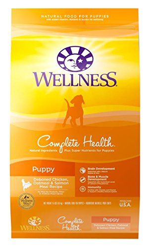 Wellness Complete Health Natural Dry Puppy Food, Chicken, Salmon & Oatmeal, 15-Pound Bag