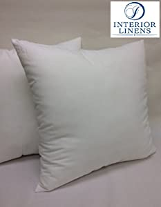 Firm Throw Pillow Inserts : Amazon.com - 24