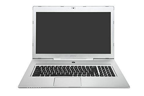 MSI Notebook GS70-2QE16SR51S 43,9cm