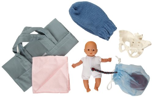 Health Edco W43092 6 Piece Pocket Uterus Baby And Pelvix Mini Model Set front-141682