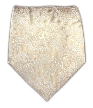 100% Silk Woven Cream/Ivory/Champagne Twill Paisley Boys Tie