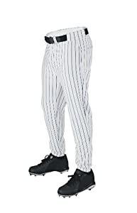 Buy Wilson Sporting Goods Youth Deluxe Poly Warp Knit Pinstripe Baseball Pant by Wilson