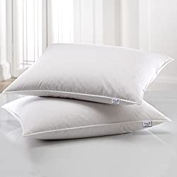 Story@Home Microfibre 2 Piece Pillow - White