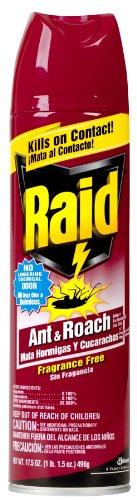 Raid 11717 Ant & Roach Killer front-205789