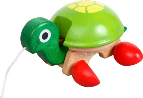 Voila Pull-Along Pet, Tortoise - 1