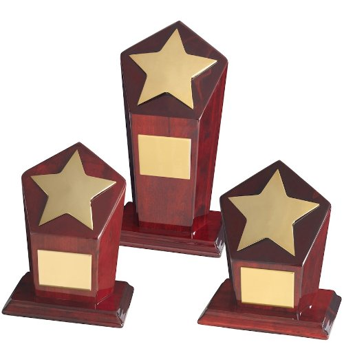 Silvertrophy.com TZ009 Gold Star Achievement Award - 7