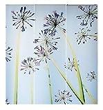 IKEA EMELINA Gardine 3-teilig Schiebegardine Schiebevorhang Pusteblume Löwenzahn Blumen
