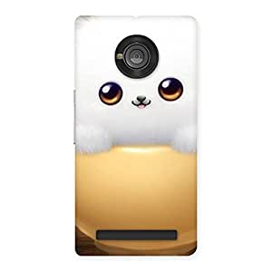Premium Cutest Fluffy Kitty Back Case Cover for Yu Yuphoria