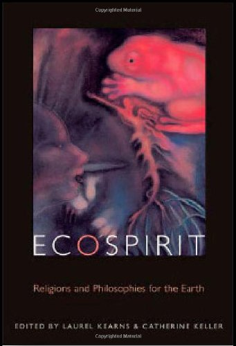 Ecospirit: Religions And Philosophies For The Earth (Transdisciplinary Theological Colloquia)