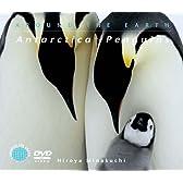 南極~ペンギン [DVD]