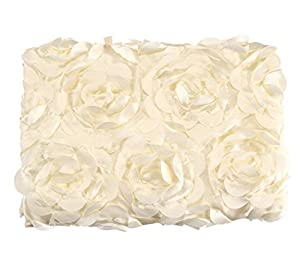 Buytra Baby Photography Props 3D Rose Flower Backdrop Beanbag Blanket Rug