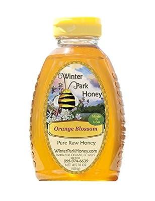 Raw Orange Blossom Honey 16oz (Pure Natural Honey) from Winter Park Honey